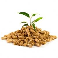 Система для генерации тепловой энергии из гранул биомассы